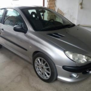 Peugeot 206 '04 1.6