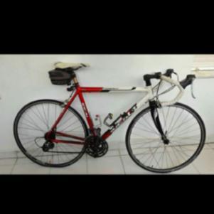 Ideal bike