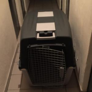 Κλουβι για σκυλο