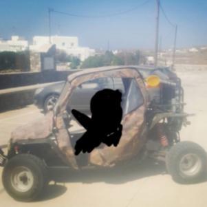 Beach buggy Ymc